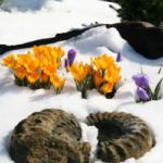 Frühlingsgefühle & Familienglück